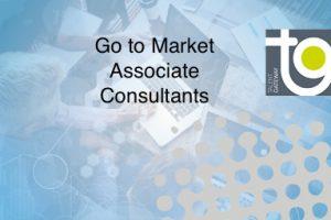 Go to Market Associate Consultants – B2B